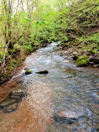 riverphoto-gadget